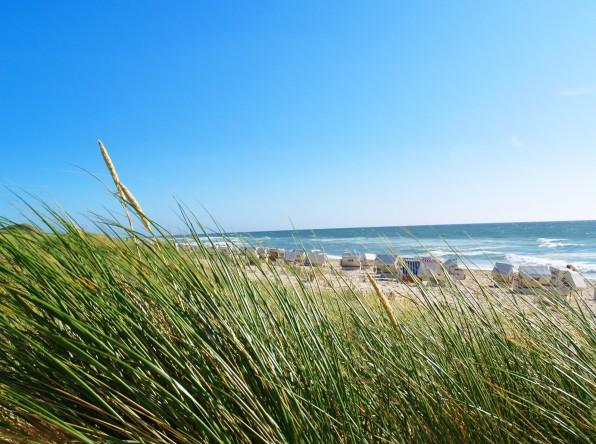 Camping auf Rügen – Die Inselwelt der Ostsee entdecken