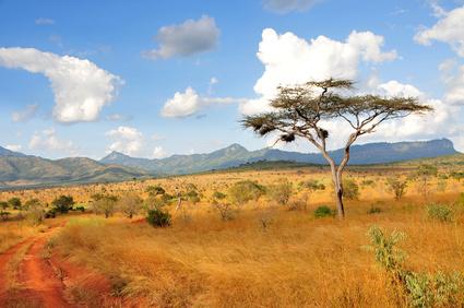 Abenteuerurlaub in Simbabwe - lassen Sie sich verzaubern