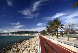Artikelgebend ist Palma auf Mallorca.