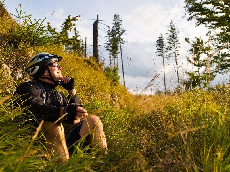 Im Harz finden Mountainbiker steile Radrouten für Könner. Foto: djd/TMN/Maruba b.V. Sports Publishers