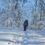Winterspaß: Die schönsten Strecken rund um die Harzer Fachwerkstadt Osterode